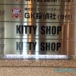 kitty-store-26